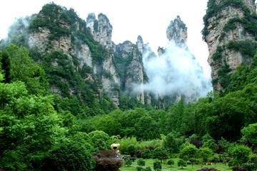 大明山避暑旅居康养之旅四天三晚游