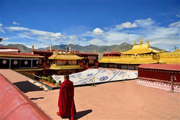 西藏双卧11日游
