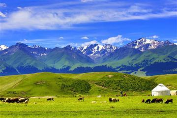 新疆喀纳斯双飞