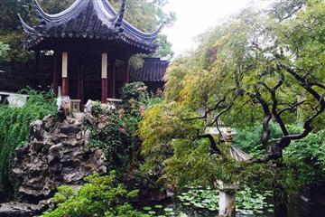 梦回红楼——上海大观园、朱家角一日游