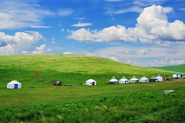 呼伦贝尔草原、莫日格勒场民俗河、私家双牧体验、室韦、满洲里