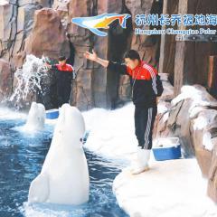 """""""从陆地到海洋的跨越""""杭州长乔极地海洋公园精品一日游"""